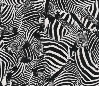Popier Peint Tapeten Safari  Club Zebra ! Design