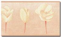 Borte Blume Tulpe Italien Rosa