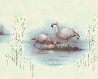 Tapete Flamingo Vogel Kínderzimmer