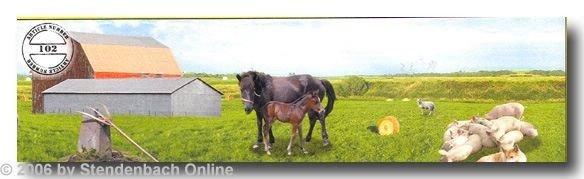 Bordüre günstig selbstklebend Digitaldruck Pferde Bauerhof