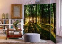 225x172 cm 5 - teiliges Paravent Morning in the Forest II