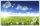 XXL wallpaper Grassland 5 x 3,33 Meter (150g Vlies)