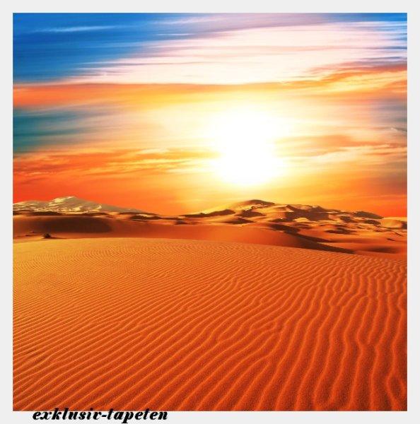 XXL wallpaper Dune 5 x 3,33 Meter (150g Vlies)