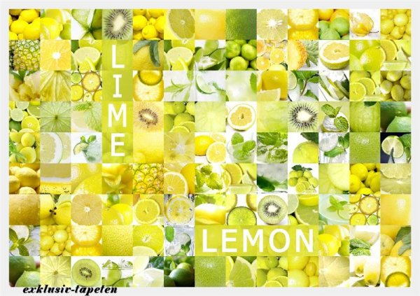 XXL wallpaper Lemon 5 x 3,33 Meter (150g Vlies)