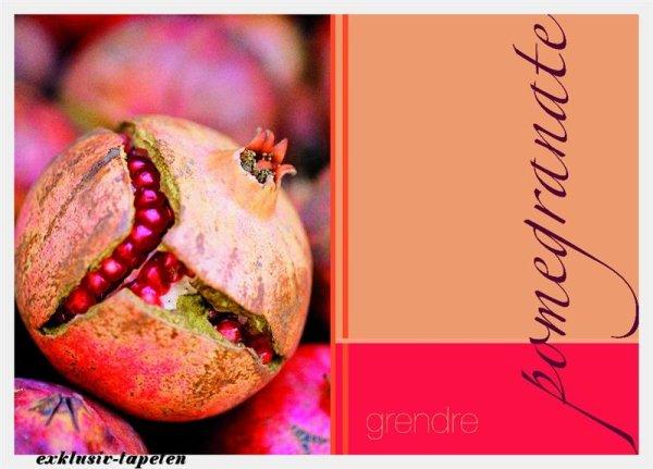 M wallpaper  Pomegranate 1,33 x 2 Meter (150g Vlies)