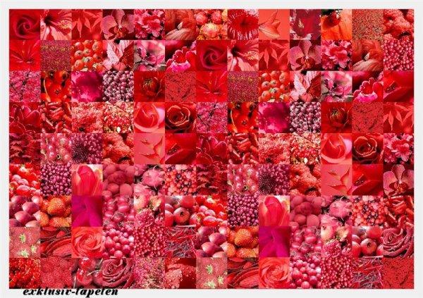 M wallpaper  Red 1,33 x 2 Meter (150g Vlies)