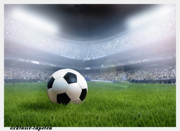 L wallpaper Soccer 3 x 2,5 Meter (150g Vlies)