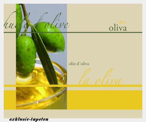 L wallpaper Olive 3 x 2,5 Meter (150g Vlies)