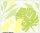 XL wallpaper Leaf 4 x 2,67 Meter (150g Vlies)