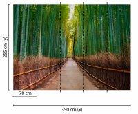 Fototapete 3,5 x 2,55 M. Bambus Walk
